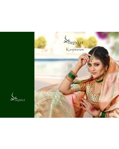 BUNDLE OF 9 WHOLESALE SALWAR SUIT CATALOG  MEGHDOOT - KANJIWARAM